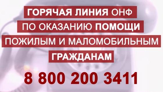 Телефон горячей линии СПб, помощь гражданам